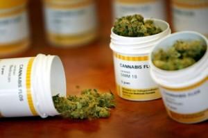 cannabis vendu en pharmacie