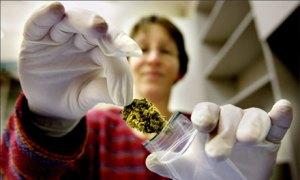 De nombreux pays européens prescrivent du cannabis aux patients  qui en ont besoin