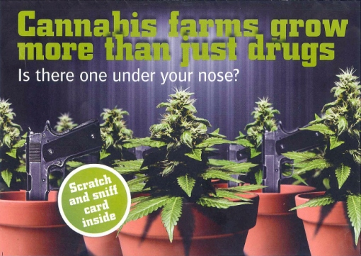 """Les fermes de cannabis cultivent bien plus que de la drogue"""